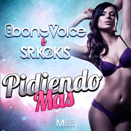 Pidiendo Más - Single